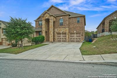 San Antonio Single Family Home New: 21222 Stone Saddle