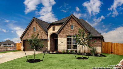 Seguin Single Family Home Price Change: 2944 Countryside Path