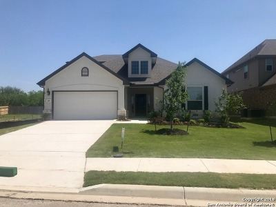 Cibolo Single Family Home New: 440 Turning Stone