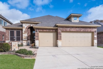 Helotes Single Family Home New: 10523 Cima Vis