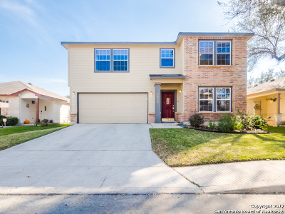 San Antonio Single Family Home New: 4038 Angel Trumpet