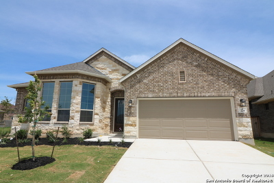Cibolo Single Family Home For Sale: 224 Kildare