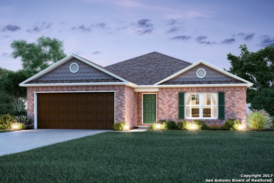 Guadalupe County Single Family Home New: 132 Fabarm Lane