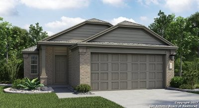 New Braunfels Single Family Home New: 2341 Arctic Warbler