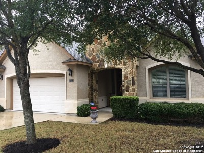 San Antonio Single Family Home New: 18223 Dogwood Path