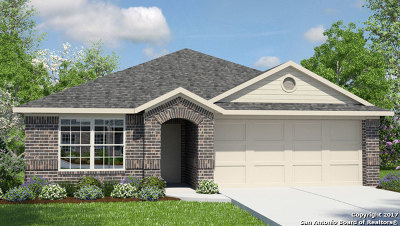 New Braunfels Single Family Home New: 2598 McCrae