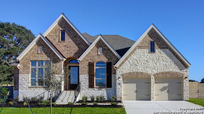 New Braunfels Single Family Home New: 618 Coral Berry