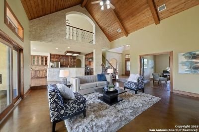 Boerne Single Family Home For Sale: 103 Sage Brush