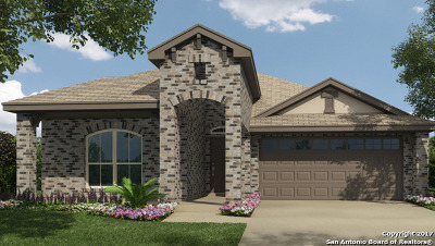 Comal County Single Family Home New: 2987 Gypsum Cove