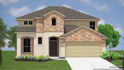 New Braunfels Single Family Home New: 2048 Flintshire Drive