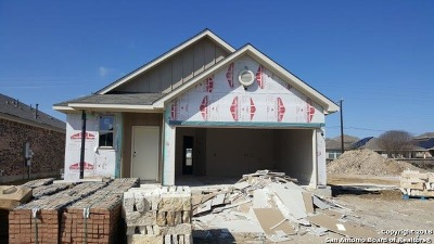 Helotes Single Family Home New: 9731 Bricewood Post