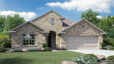 New Braunfels Single Family Home New: 442 Pecan Meadows