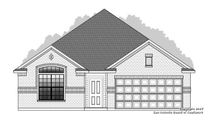 New Braunfels Single Family Home New: 438 Pecan Meadows