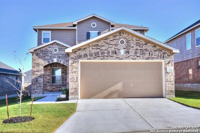San Antonio TX Single Family Home New: $258,000