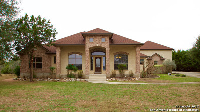 New Braunfels Single Family Home New: 10302 Teich Loop