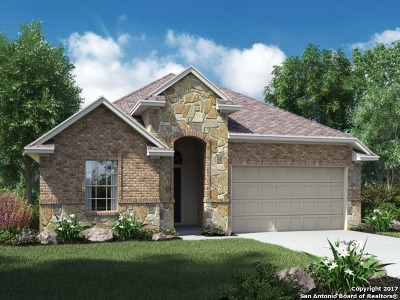 Cibolo Single Family Home New: 249 Cansiglio