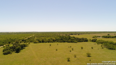 Wilson County Farm & Ranch For Sale: 3505 County Road 476