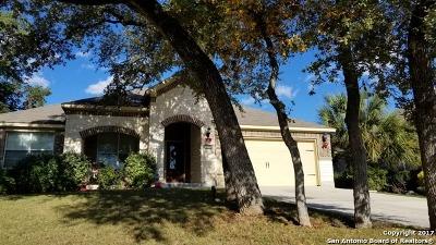 San Antonio Single Family Home New: 4523 James Bowie