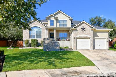 San Antonio Single Family Home New: 3 Horseshoe Cyn