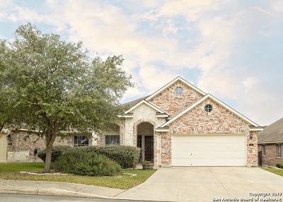 San Antonio Single Family Home New: 710 Aster Trl