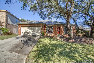 San Antonio Single Family Home New: 3107 Mares Mdws