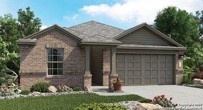 San Antonio TX Single Family Home New: $206,999