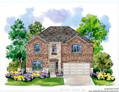San Antonio Single Family Home New: 5715 Chestnut Crossing