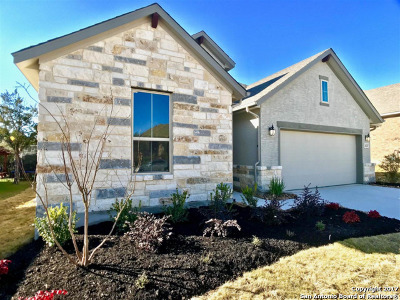 Helotes Single Family Home New: 16247 Ondara