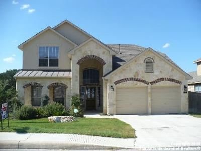 San Antonio Single Family Home New: 738 Aster Trl