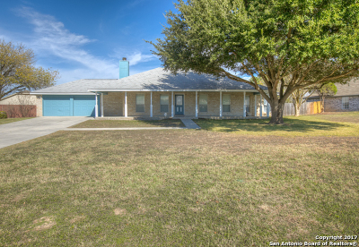Comal County Single Family Home New: 134 Sky Country Dr