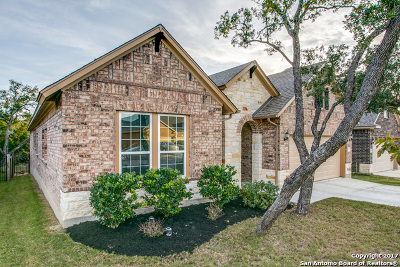 Helotes Single Family Home New: 10330 Rocamora