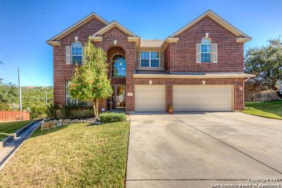 San Antonio Single Family Home New: 423 Mesa Cyn