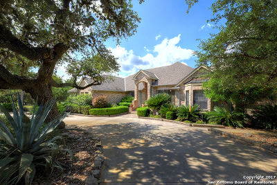 Fair Oaks Ranch Single Family Home New: 29046 Cloud Croft Ln
