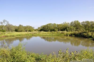 Atascosa County Farm & Ranch For Sale: 2026 Fm 478