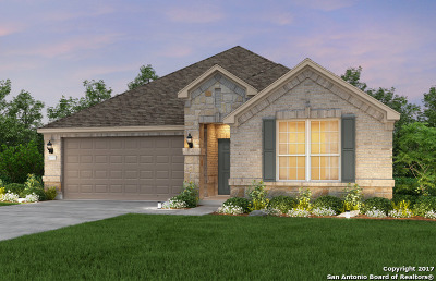 Helotes Single Family Home New: 11202 Rock Daisy
