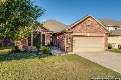Guadalupe County Single Family Home New: 445 Silver Buckle