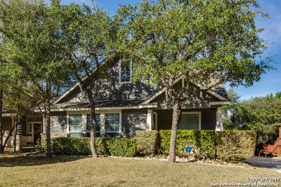 San Antonio Single Family Home New: 331 Willow Grove Dr