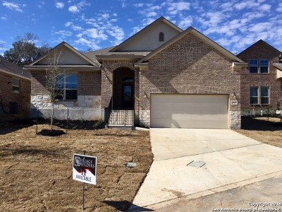 Fair Oaks Ranch Single Family Home New: 29609 Elkhorn Ridge