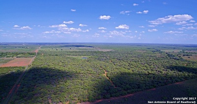 Atascosa County Farm & Ranch For Sale: 7420 W Highway 97