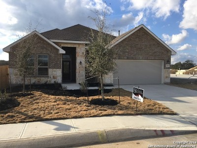 Fair Oaks Ranch Single Family Home New: 29647 Elkhorn Ridge