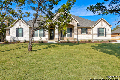 New Braunfels Single Family Home New: 568 Solms Forest