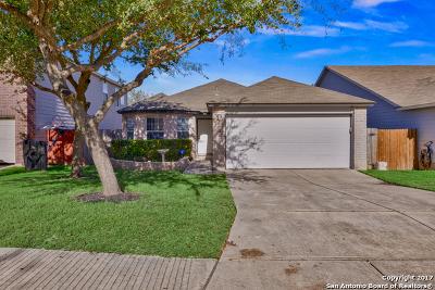 San Antonio Single Family Home New: 9427 Hacienda Acres