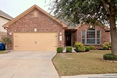 San Antonio Single Family Home New: 12018 Water Vly