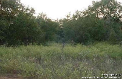 Atascosa County Residential Lots & Land New: Lot 91 Garden Dr