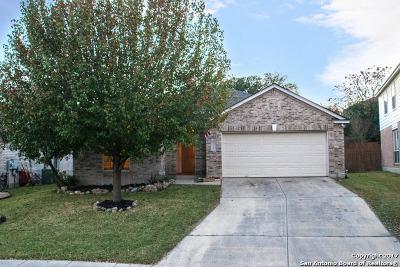 San Antonio Single Family Home New: 21406 Rio Colorado