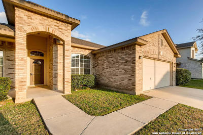 New Braunfels Single Family Home New: 750 San Mateo