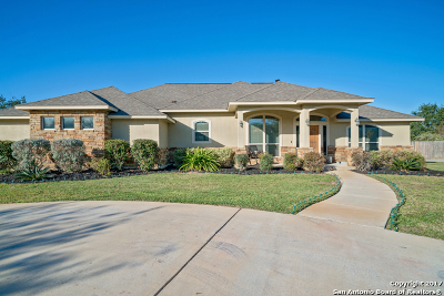 Pleasanton Single Family Home For Sale: 1650 Embassy Rd