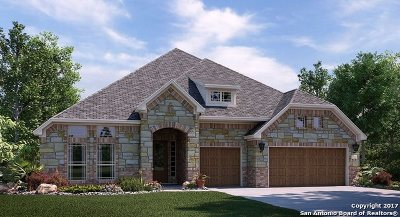 San Antonio Single Family Home New: 16815 Sonoma Ridge