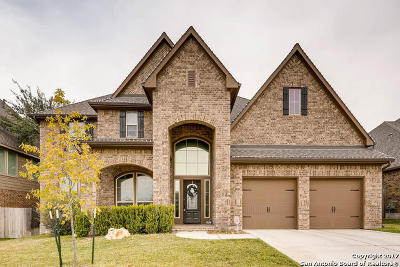 New Braunfels Single Family Home New: 580 Oak Cascade