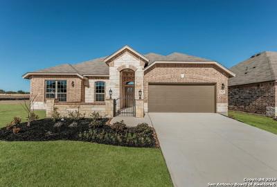 San Antonio Single Family Home New: 13847 Prosper Oaks